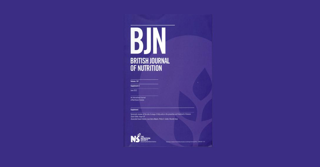imagen articulo BJN2