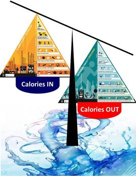 Curso equilibrio energético y vida saludable