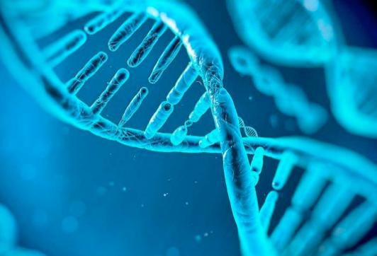 Destacada Curso Netrogenómica
